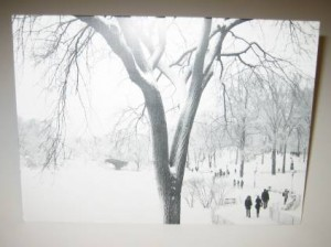 Holiday Cards for lawyers showing snow scene